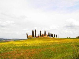 Primavera en la Toscana